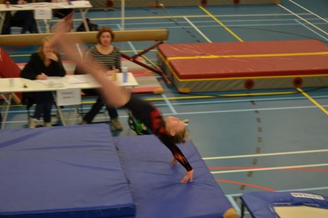 jasmijn spring